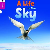 A Life in the Sky
